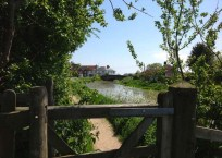 Views of the Adur 3